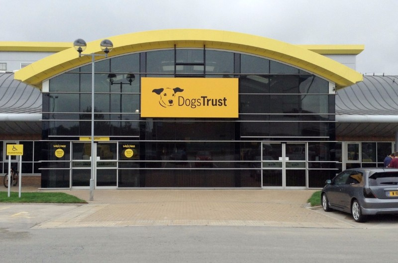 Dogs-Trust-Manchester