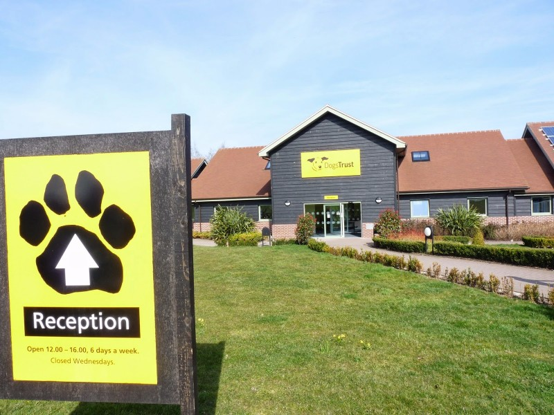 Dogs-Trust-Shrewsbury