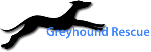 Greyhound-Rescue