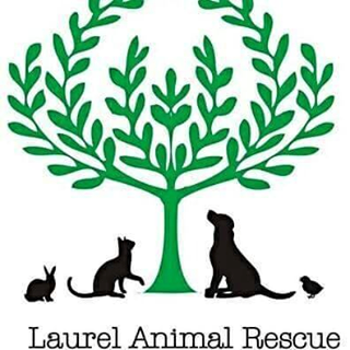 laurel-animal-rescue