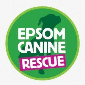 Epsom Canine Rescue, Surrey