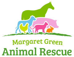 mg-animal-rescue