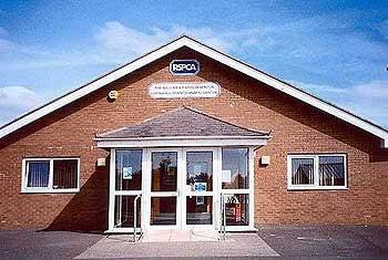 RSPCA-venton-centre