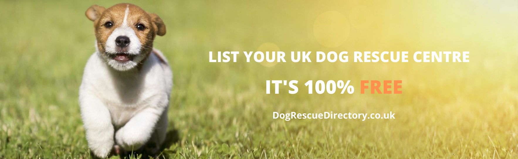 advertise your dog rescue centre
